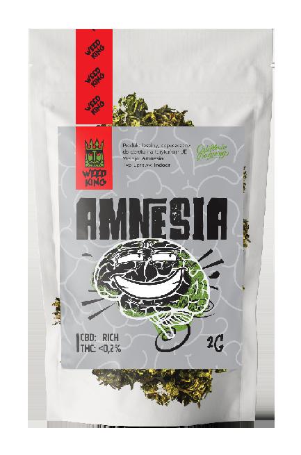 w_amnesia2